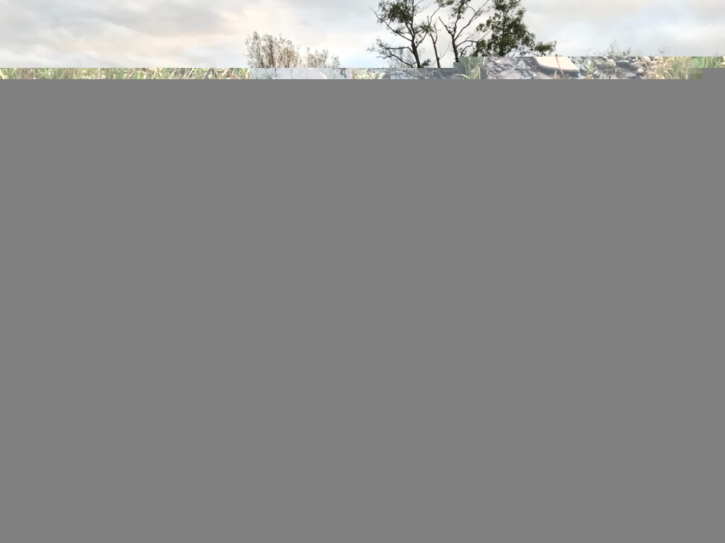 A person standing in a river