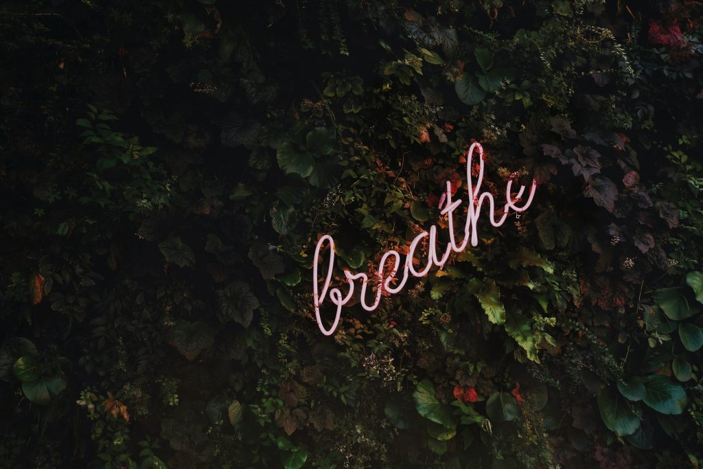 a neon sign that reads breathe on a wall of ivy
