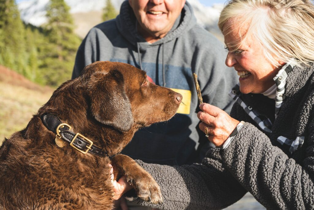 an older woman giving a treat to a large brown dog