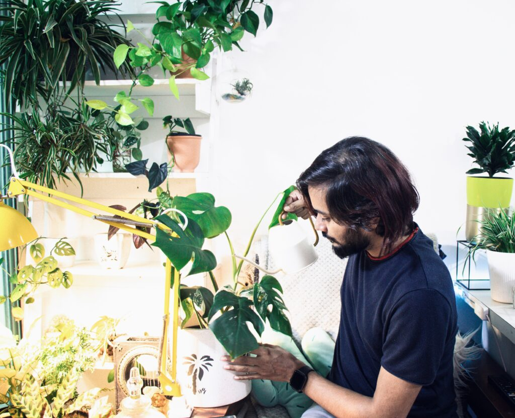 a young asian man with a beard and long hair caring for indoor plants